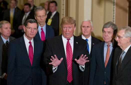 Sen. Lindsey Graham, R-S.C., left, Sen. John Barrasso, R-Wyo., Sen. John Thune, R-S.D., stand with President Donald Trump, Vice President Mike Pence, Sen. Roy Blunt, R-Mo., and Senate Majority Leader Mitch McConnell of Ky., as Trump speaks while departing after a Senate Republican Policy luncheon, on Capitol Hill in Washington, Wednesday, Jan. 9, 2019. (AP Photo/Alex Brandon)